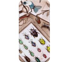Insect Collector iPhone Case/Skin