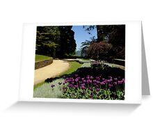 """Everglades"" Leura Greeting Card"