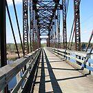 Red Cedar Bike Trail Bridge by AlteriorMotives
