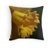Confident Radiance Throw Pillow