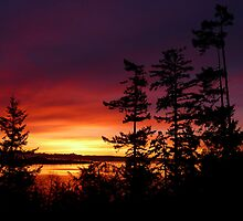 Oak Harbor Sunrise Two by Rick Lawler