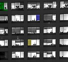 Study in windows... by Eyal Nahmias