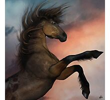 The Mighty Stallion Photographic Print
