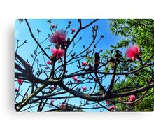 Shaving Brush Tree 5 Canvas Print