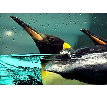 Come back Pingu! Photographic Print