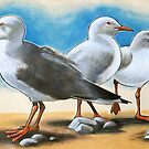 Silver Gulls 1 by EnPassant