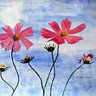 Cosmos flowers in my country by Elizabeth Kendall
