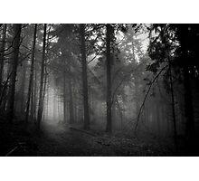 Les Étangs Fantomatiques IV Photographic Print