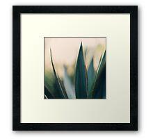 Spine #9 Framed Print