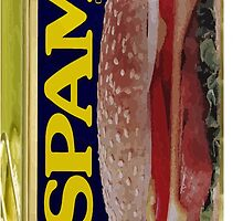 SPAM by waiting4urcall