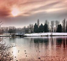 billing lake sunset by cynthiab