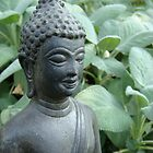 Budda in Nature by Paul Yager