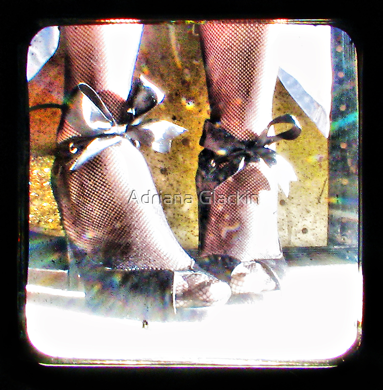 ~ the girl and the shoe fairy ~ by Adriana Glackin