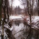The Bend in the River by Eugenio
