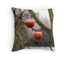 Apples in the back garden.. Throw Pillow