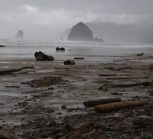 Hay Stack Rock, Canon Beach, Oregon by OrielB