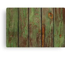 Old Wooden Texture Canvas Print