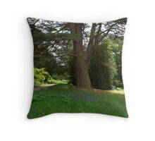 Bluebell wood with a rustic bench. Throw Pillow