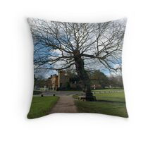No takers. Throw Pillow