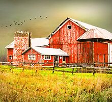 Red Barn by MaryTimman