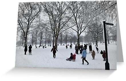 Fun in the Park by Karen Martin