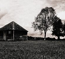Hut by Paul Davey
