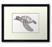 Tangled Sea Turtle Framed Print