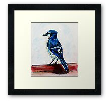 Blue Jay Painting Wildlife Bird Art  Framed Print