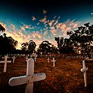 End of the line by Larrikin  Photography