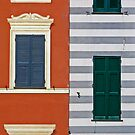 Facade by Barbara  Corvino