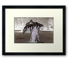 Side-Show Bob Framed Print