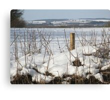 North Dorset snow scene Canvas Print