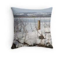 North Dorset snow scene Throw Pillow