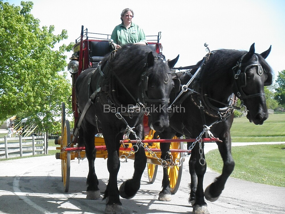 Working Percherons by BarbBarcikKeith