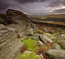 Lower Wharfedale from Sartree Crag by Andrew Leighton