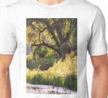 Beauty  Unisex T-Shirt
