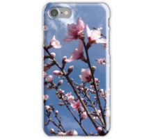 Spring Peach Blossoms  iPhone Case/Skin