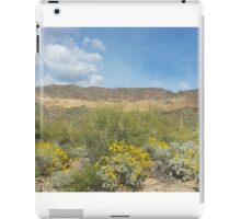 The Superstitions  - Arizona Landscape iPad Case/Skin