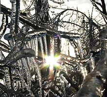 Light at the End of the Ice Storm  by Rebecca Joppru Connolly