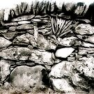 """""""Every Stone In Its Place"""" by Bradley Shawn  Rabon"""