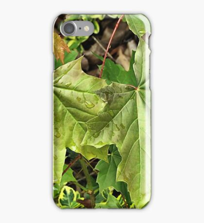 Still Green iPhone Case/Skin