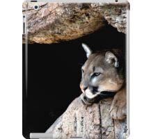 Ever Vigilant iPad Case/Skin