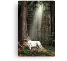 Dreaming in the Forest Canvas Print