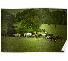 Cattle Drive ? Poster