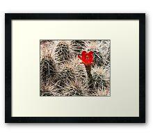 Hedgehog Heaven Framed Print