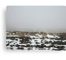 Snowy Winter Farm Land Dirt and Straw Landscape in Fog 3 - Earth's Surface without structural buildings, war, or blood by man - natural peaceful nature. Canvas Print
