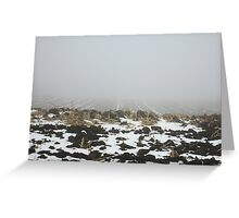 Snowy Winter Farm Land Dirt and Straw Landscape in Fog 3 - Earth's Surface without structural buildings, war, or blood by man - natural peaceful nature. Greeting Card