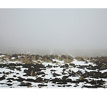 Snowy Winter Farm Land Dirt and Straw Landscape in Fog 3 - Earth's Surface without structural buildings, war, or blood by man - natural peaceful nature. Photographic Print
