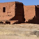 Pecos Mission Panorama by TheBlindHog