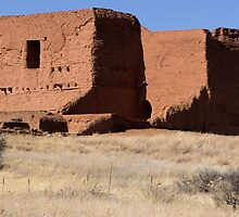 Pecos Mission Panorama by Mitchell Tillison